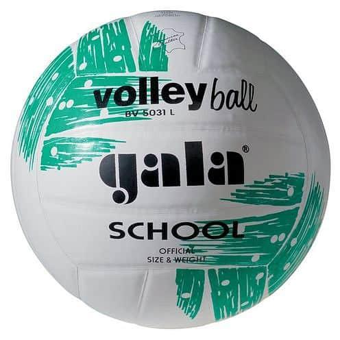 Volejbalový míč GALA School - BV 5031 L