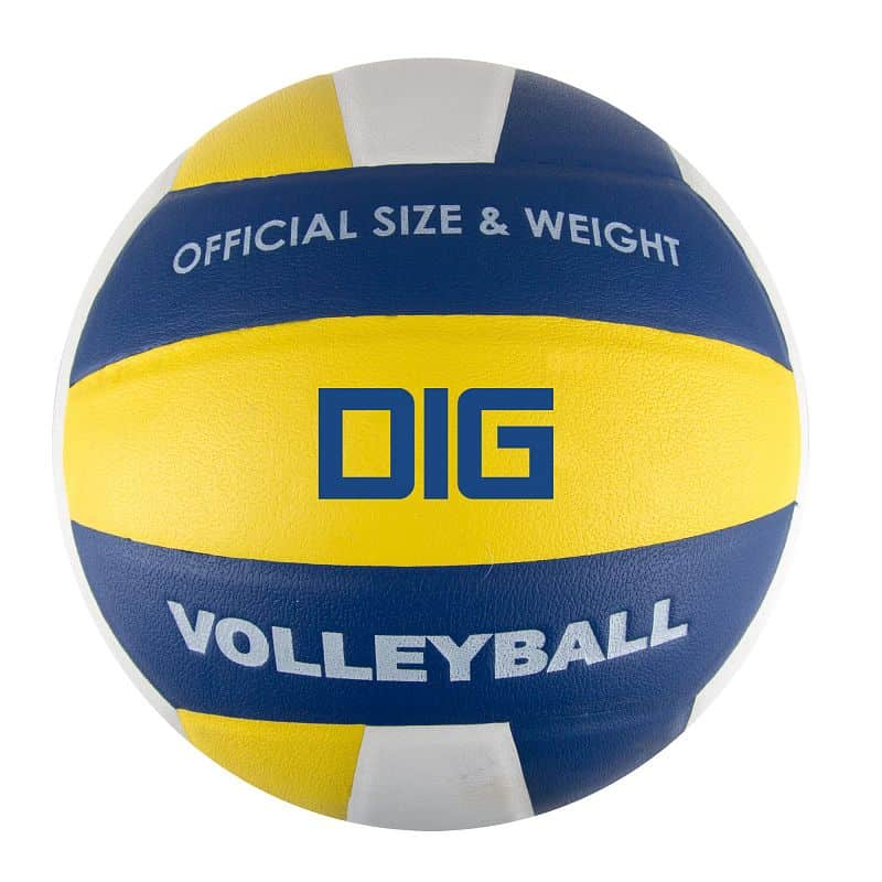 DIG II Volejbalový míč modro-žlutý vel.5