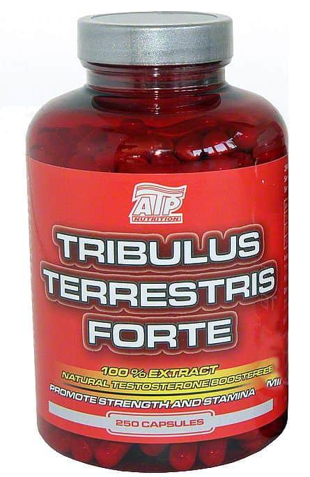 Tribulus Terrestris Forte 250 cps - VÝPRODEJ 250 cps