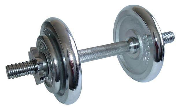 ACRA Činka nakládací, jednoruční 8,5 kg - chromované kotouče