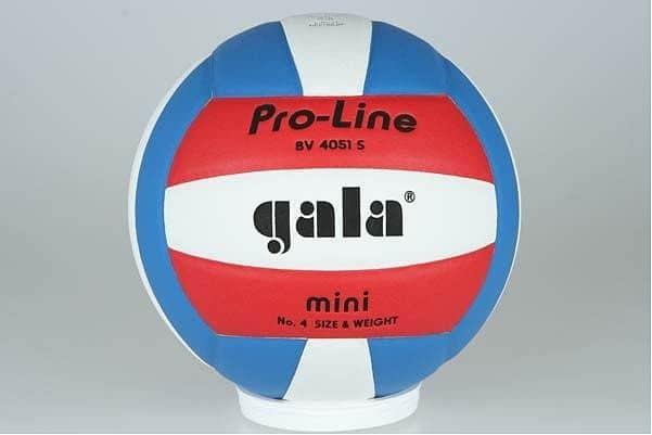 Volejbalový míč Gala PRO LINE 4051 S